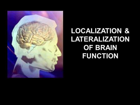 brief brain lateralization theory Theory schemata sensorimotor stage chapter 4 child development principles and theories 73 factors are critical to healthy brain development however.