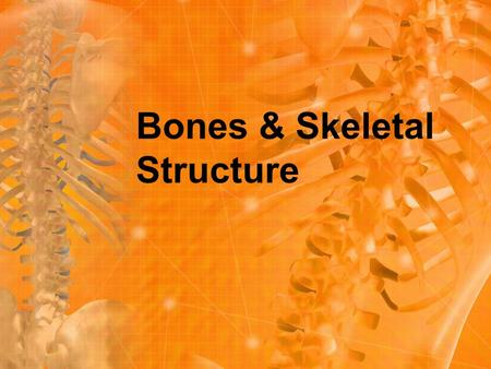 Bones & Skeletal Structure. Bones are a type of hard endoskeleton found in all vertebrates. Bones give bodies their structure and protect internal organs.