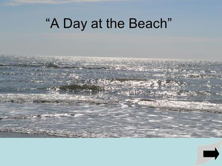 """A Day at the Beach"". A Day at the Beach is a concept book. It's is an ideal tool to supplement and reinforce concepts associated with experiencing a."