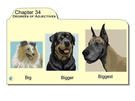 Chapter 34 Degrees of Adjectives Biggest Big Bigger.