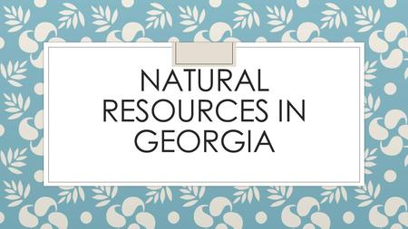NATURAL RESOURCES IN GEORGIA. Georgia ◦ Largest State East of the Mississippi. ◦ 37 Million Acres ◦ Home to 975 Vertebrate Species, 63 of which are found.