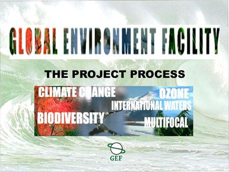 THE PROJECT PROCESS GEF Structure How Does the GEF Process Work? Different project development pathways available Specific requirements Long approval.