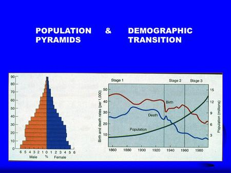 POPULATION & DEMOGRAPHIC PYRAMIDSTRANSITION. Demographic Transition - Stage 1 F Demographic Transition - the change in population characteristics of a.