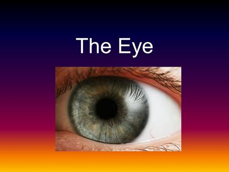 The Eye. The eye is an organ that can detect light and convert sit into a electro- chemical impulse that is transferred to the brain.