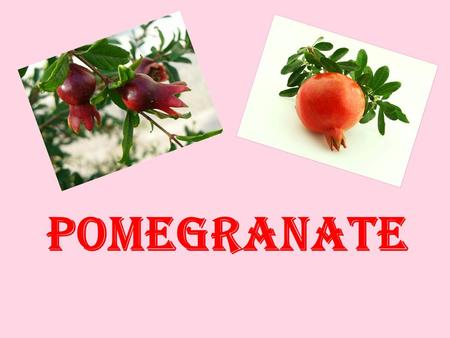 POMEGRANATE. Pomegranate is a popular exotic fruit whose origins are from the Middle East and Asia.