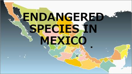 ENDANGERED SPECIES IN MEXICO. Mexico is a country rich in wildlife and makes up about 10 percent of the species living in the world; at least half of.