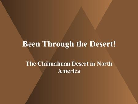 Been Through the Desert! The Chihuahuan Desert in North America.