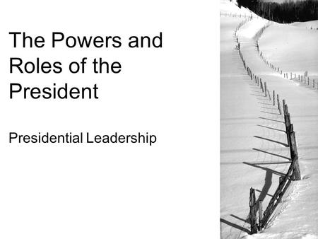 The Powers and Roles of the President Presidential Leadership.
