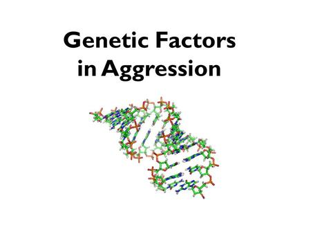 Genetic Factors in Aggression The Genetic Link in Aggression What have twin and adoption studies shown? McGuffin & Gottesman (1985) study of concordance.