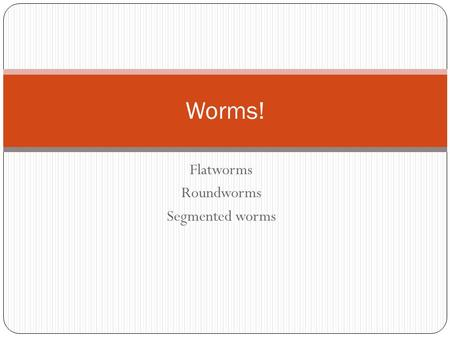 Flatworms Roundworms Segmented worms