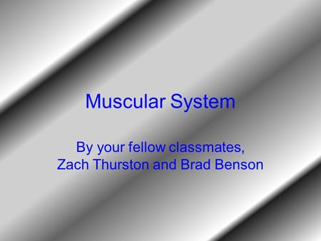 Muscular System By your fellow classmates, Zach Thurston and Brad Benson.