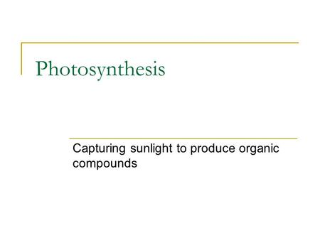 Photosynthesis Capturing sunlight to produce organic compounds.