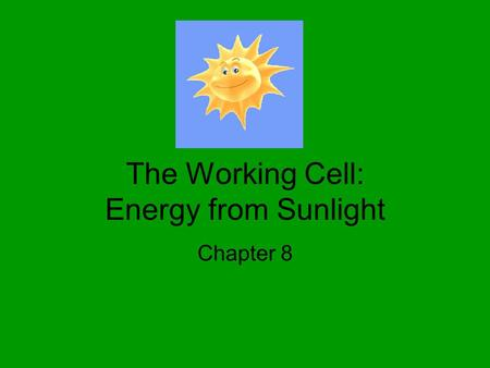 The Working Cell: Energy from Sunlight Chapter 8.