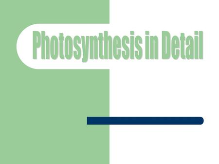 Photosynthesis is… …the process through which plants convert light energy to chemical energy in order to produce food The energy involved in photosynthesis.