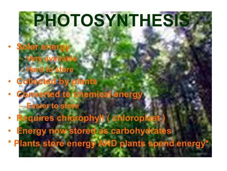 PHOTOSYNTHESIS Solar energy –Very available –Hard to store Collected by plants Converted to chemical energy –Easier to store Requires chlorophyll ( chloroplast.