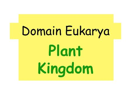 Domain Eukarya Plant Kingdom. Traits of Plants: ♣ Multicellular, photosynthetic, eukaryotes ♣ Waxy cuticle to prevent water loss ♣ Stomata (openings on.