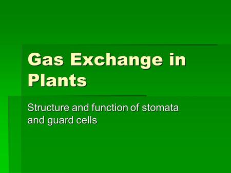 Gas Exchange in Plants Structure and function of stomata and guard cells.