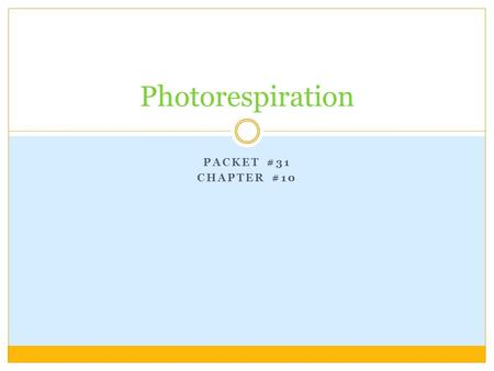 PACKET #31 CHAPTER #10 Photorespiration. Introduction Plants that use the Calvin Cycle to fix carbon, in the molecule sugar, are called C 3 plants. During.