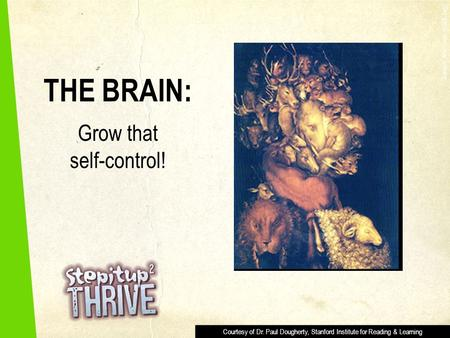 THE BRAIN: Grow that self-control! Giuseppe Arcimboldo (1593, Italy) Courtesy of Dr. Paul Dougherty, Stanford Institute for Reading & Learning.