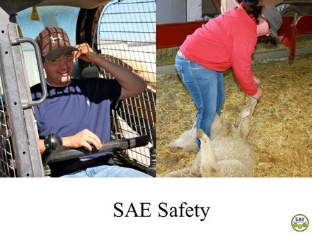 SAE Safety. Why is SAE safety important? Agriculture is one of the most dangerous industries in the nation and youth working in agriculture have a higher.