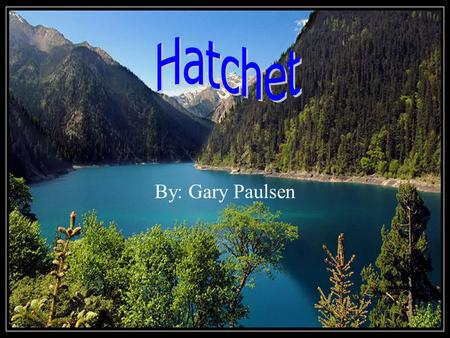 By: Gary Paulsen The main characters There are three main characters in hatchet and one is a thirteen year old boy named Brian Robeson and his mother.