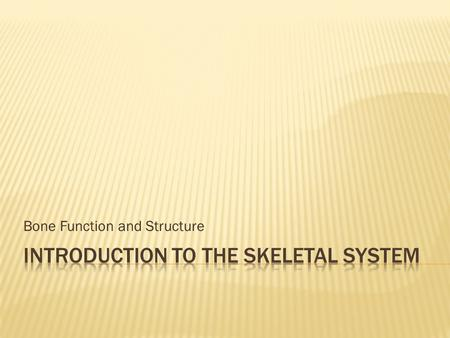 Bone Function and Structure.  Histology of Bone Tissue  Bone Function and Structure  Bone Growth & Development  Joints  The Axial Skeleton  The.