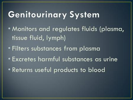 Monitors and regulates fluids (plasma, tissue fluid, lymph) Filters substances from plasma Excretes harmful substances as urine Returns useful products.