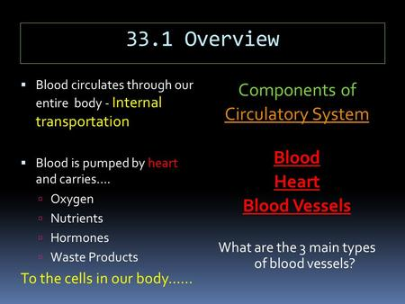 33.1 Overview  Blood circulates through our entire body - Internal transportation  Blood is pumped by heart and carries….  Oxygen  Nutrients  Hormones.