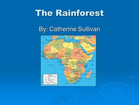 The Rainforest By: Catherine Sullivan. What is causing the rainforest to disappear? What percent of the rainforest is already gone?  90% of the rainforest.