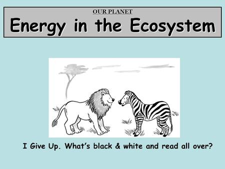 OUR PLANET Energy in the Ecosystem I Give Up. What's black & white and read all over?