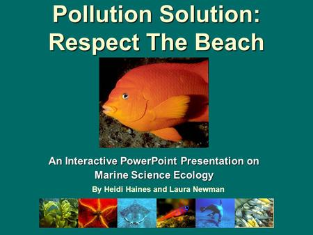 Pollution Solution: Respect The Beach An Interactive PowerPoint Presentation on Marine Science Ecology By Heidi Haines and Laura Newman.