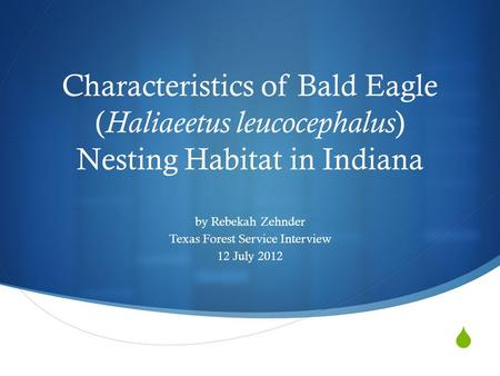  Characteristics of Bald Eagle ( Haliaeetus leucocephalus ) Nesting Habitat in Indiana by Rebekah Zehnder Texas Forest Service Interview 12 July 2012.
