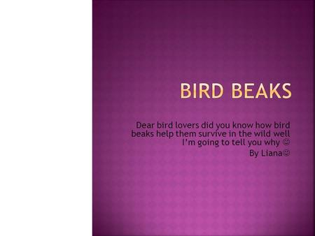 Dear bird lovers did you know how bird beaks help them survive in the wild well I'm going to tell you why By Liana.