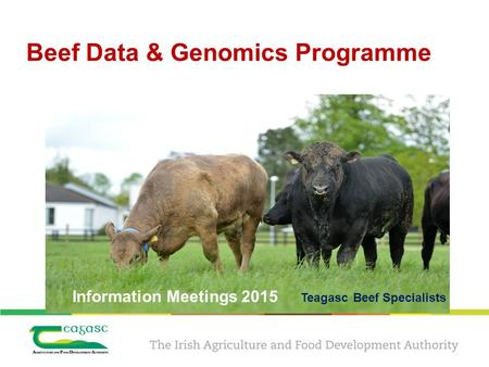 Beef Data & Genomics Programme Information Meetings 2015 Teagasc Beef Specialists.