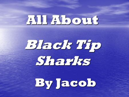 All About Black Tip Sharks By Jacob Table of Contents Where are Black Tip Sharks found? 4 What do Black Tips look like? 6 How fast can they swim? 8.