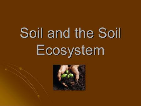 Soil and the Soil Ecosystem. Soil Characteristics Profiles Profiles Texture Texture Classes Classes.