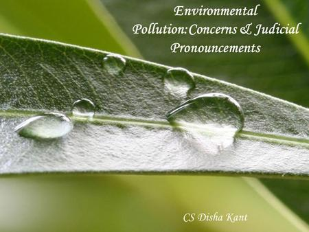 Environmental Pollution:Concerns & Judicial Pronouncements