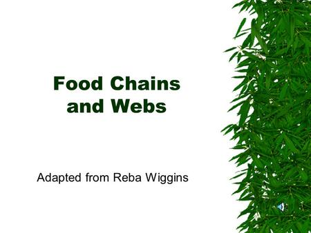 Food Chains and Webs Adapted from Reba Wiggins Food Chain  Order in which animals eat plants and other animals.  Always begins with autotrophs.  Arrows.