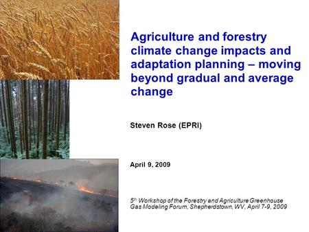 Steven Rose (EPRI) April 9, 2009 5 th Workshop of the Forestry and Agriculture Greenhouse Gas Modeling Forum, Shepherdstown, WV, April 7-9, 2009 Agriculture.