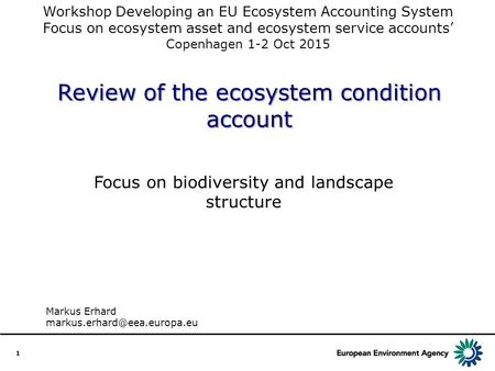 Review of the ecosystem condition account