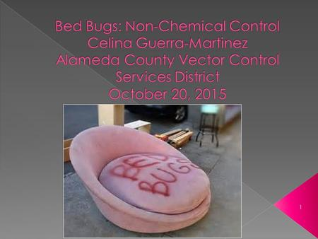 1.  What doesn't work if used alone  Essential components of bed bug control whether or not pesticides are used  Options besides chemicals  Step by.
