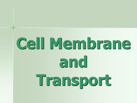 Cell Membrane and Transport. Cell membrane structure Made of Made of –Phospholipids –Proteins –Cholesterol –Carbohydrate chains (glycolipids and glycoproteins)