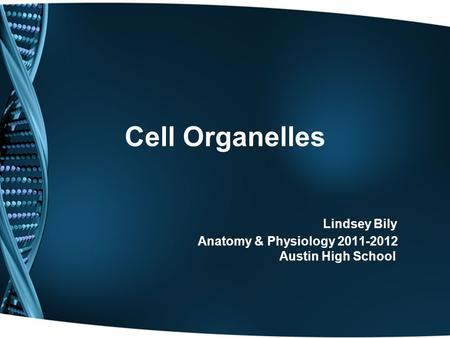 Cell Organelles Lindsey Bily Anatomy & Physiology 2011-2012 Austin High School.