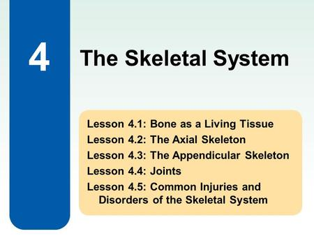 4 Lesson 4.1: Bone as a Living Tissue Lesson 4.2: The Axial Skeleton Lesson 4.3: The Appendicular Skeleton Lesson 4.4: Joints Lesson 4.5: Common Injuries.