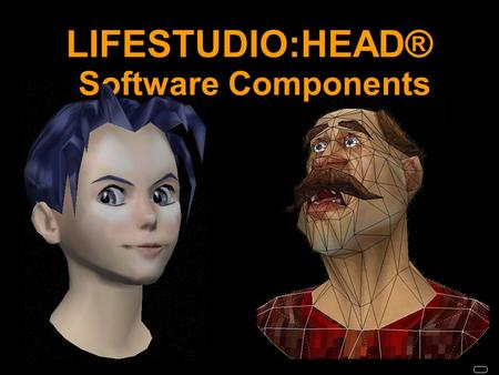 LIFESTUDIO:HEAD® Software Components. Overview LIFESTUDIO:HEAD® Software Components Authoring Tool or Editor Plug-Ins SDK.
