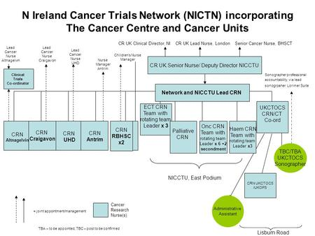 N Ireland Cancer Trials Network (NICTN) incorporating The Cancer Centre and Cancer Units CR UK Clinical Director, NICR UK Lead Nurse, LondonSenior Cancer.