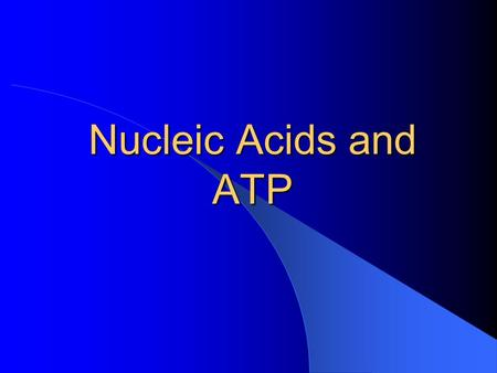 Nucleic Acids and ATP. Nucleic Acids Named because they were first found in the nucleus of cells VERY VERY BIG Contain C, H, O, N and P.