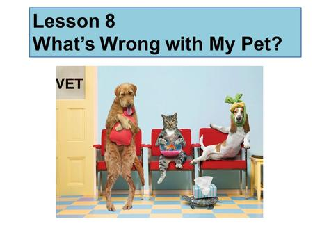 Lesson 8 What's Wrong with My Pet?. Warm up Team 1: How many foods can you think of that begin with S? Team 2: How many foods can you think of that begin.