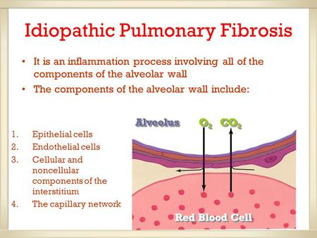 Idiopathic Pulmonary Fibrosis It is an inflammation process involving all of the components of the alveolar wall The components of the alveolar wall include: