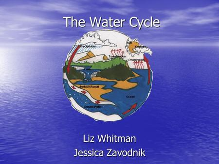 The Water Cycle Liz Whitman Jessica Zavodnik. The Water Cycle The water cycles is a process that is constantly recycling the Earth's supply of water The.